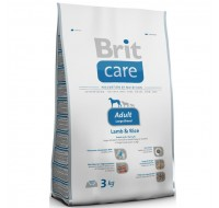 Care Adult Large BR