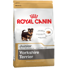 Yorkshire Terrier Junior Royal Canin