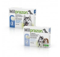 Milprozon dog