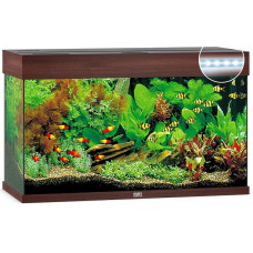 Juwel Aquarium Rio 125 LED brown