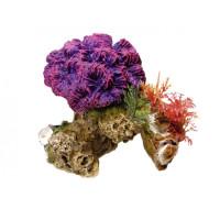 Aquadecore Coral plants 13х10х12