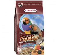 Premium Tropical Birds