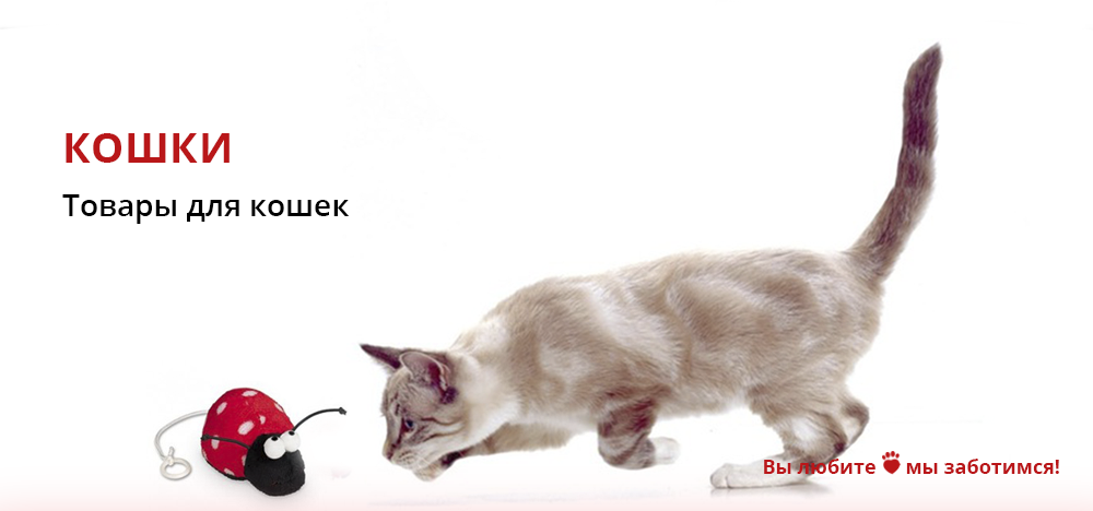 Груминг принадлежности для кошек