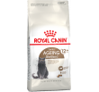 Sterilised 12+ Royal Canin