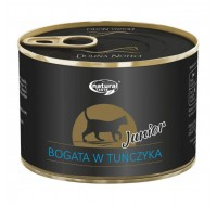 DN cat kitten Tuna