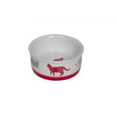 Cat bowl Fun