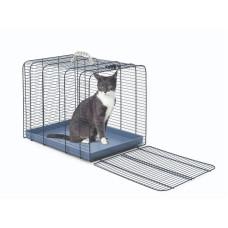Imac Gatto 3 cat