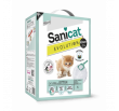 Sanicat Evolution Kitten