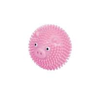 Ball pig
