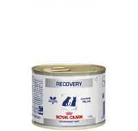Royal Canin Recovery dog wet