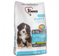 Puppy Medium CH
