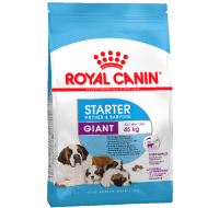Giant Starter Royal Canin