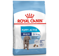 Maxi Puppy Active Royal Canin