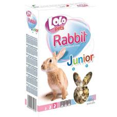 LoLo Pets Jinior Rabbit