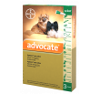 Advocate dog up 4kg