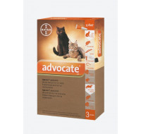 Bayer Advocate cat 4kg