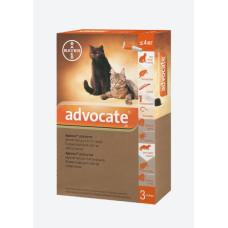 Bayer Advocate cat 4kg