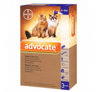 Advocate cat from 4kg