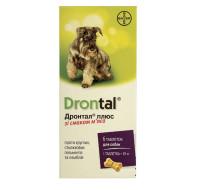 Bayer Drontal dog