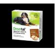 Bayer Drontal dog XL