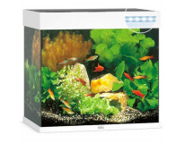 Juwel Aquarium Lido 120 LED пошаговое руководство по запуску аквариума